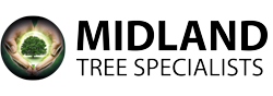 Midland Tree Specialists